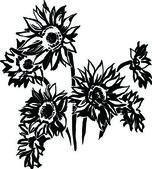 Sonnenblumen — Stockvektor