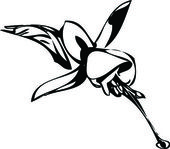 Black and white picture flower bud — Stock Vector