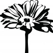 Black and white picture of nature daisy flower on the stalk — Stock Vector