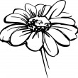 Vector de stock : Sketch wild flower resembling daisy