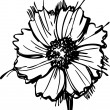 Sketch wild flower resembling a daisy - Imagen vectorial