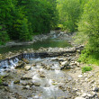 River in Carpathian mountains — Stock Photo