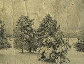 Foto retro invierno — Foto de Stock