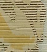Papelão rasgado — Foto Stock