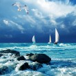 Stock Photo: Sailing regatta