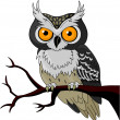 Night Owl — Stock Vector #6869603