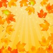 Falling Autumn Leaves background — Stock Vector