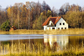 House ashore fores lake — Stock Photo