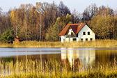 House ashore fores lake — Stock Photo
