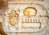 Wall with hieroglyphs — Stockfoto