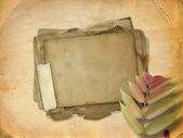 Abstract ancient brown background with set old paper in scrap bo — Stock Photo
