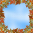 Stock Photo: Bright autumn leaves on the abstract with paper frame