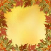 Feuilles d'automne lumineux sur l'abstrait avec cadre de papier — Photo