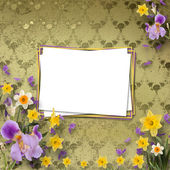 Beautiful frame with irises and daffodils on the background the — Stock Photo