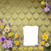 Hermoso marco con iris y narcisos en el fondo la — Foto de Stock