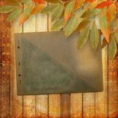 Grunge papers design in scrapbooking style with foliage and page — Stock Photo