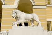 Lejonet i sankt petersburg — Stockfoto