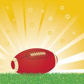 American football ball — Stock Vector