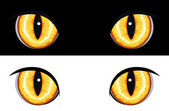 Evil Animal Eyes — Stock Vector