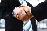 Handshake in office — Stockfoto