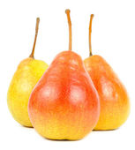 Three Pears — Stock Photo