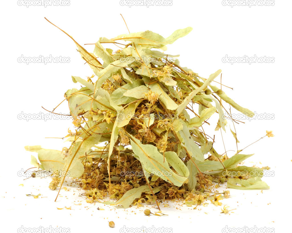 Dried linden flowers isolated on a white background — Stock Photo #7299288