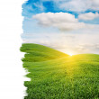 Sun Rising over Green Field with Copy Space — Stock Photo #7374739