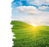 Sun Rising over Green Field with Copy Space — Stock Photo