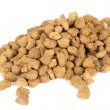 Dry Cat Food — Foto Stock