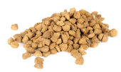 Dry Cat Food — Stock Photo