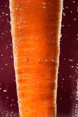 Carrot in Water with Bubbles — Stock Photo