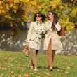 Stock Photo: Girls twins, in the autumn park