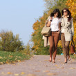 Girls twins, in the autumn park — Stock Photo #7233546