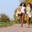 Girls twins, in the autumn park — Stock Photo #7233547