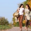 Two cheerful girls twins, in the autumn park — Stock Photo