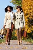 Gêmeos de garotas, no parque outono — Foto Stock