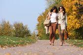 Mädchen-zwillinge, im herbst park — Stockfoto