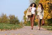 Gemelos de las niñas, en el parque otoño — Foto de Stock