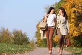 Dos gemelas de chicas alegres, en el parque otoño — Foto de Stock