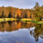 Autumn Lake Panoramic — Stock Photo