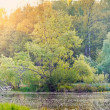 Lake in a park — Stock Photo