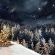 Xmas landscape — Stock Photo