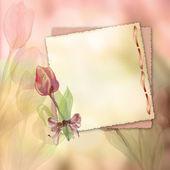 Jarní tulipány — Stock fotografie