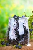 Bilberry yoghurt — Stock Photo