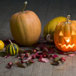 Pumpkin on a Halloween party - Stock Photo