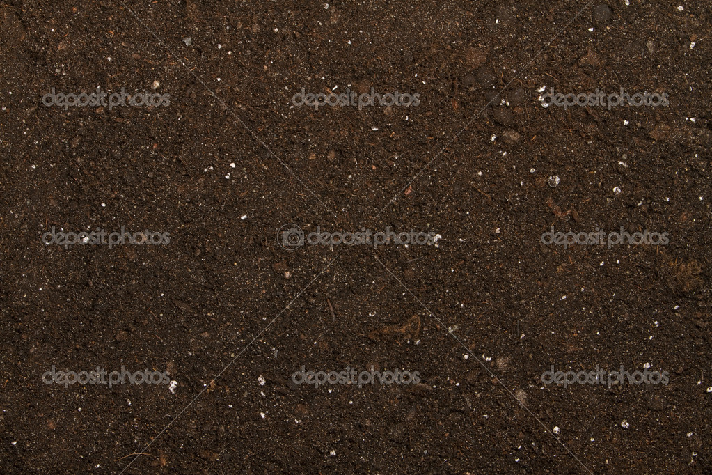 Peat soil as a background — Stock Photo #7323171