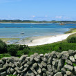 St Martins dry stone wall and middle town beach, Isles of Scilly. - Stock Photo