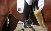 Human leg on horseback — Stock Photo