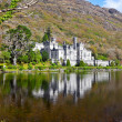 Kylemore Abbey and Castle - Stok fotoğraf