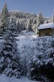 Dom pokryty śniegiem — Zdjęcie stockowe